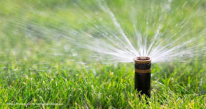 Tips to choose the best Commercial Sprinkler Repair Service